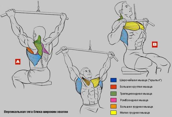 Тяга верхнего блока к груди