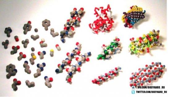 Перечень и функции аминокислот