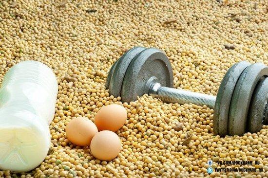 В каких продуктах больше белка?