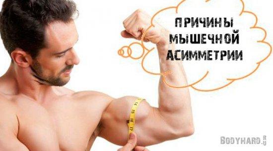 Причины телесной асимметрии