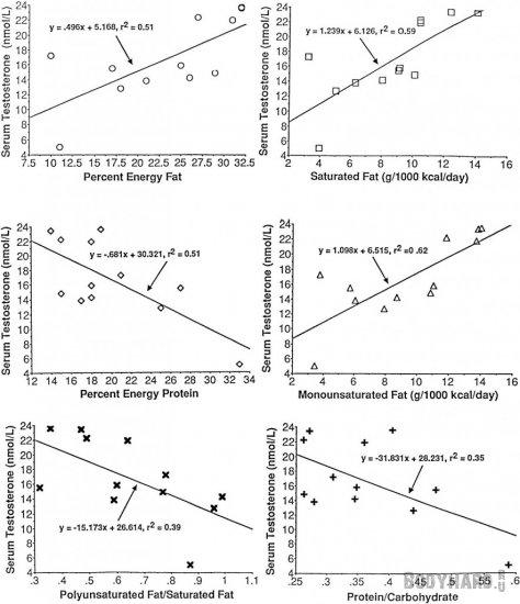 Влияние насыщенных жиров на уровень тестостерона