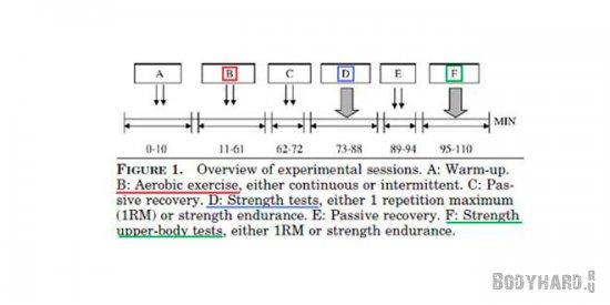 Результаты исследований максимальной силы после выполнения кардио