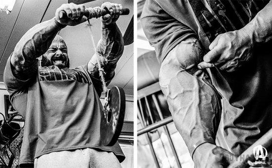 Тренировка бицепса и предплечий от Франка МакГрата