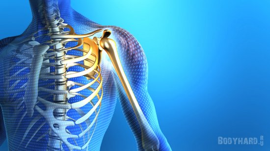 Изолированные движения в плечевом суставе